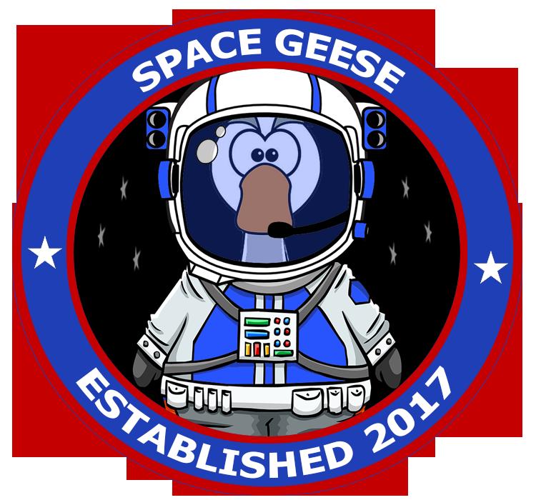 Spacegeese